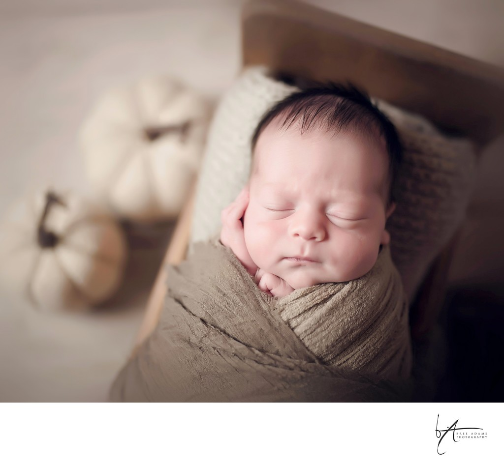 fall inspiration for newborn shoots