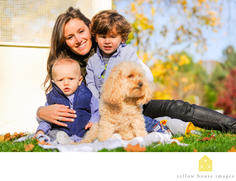 family photo packages Setauket