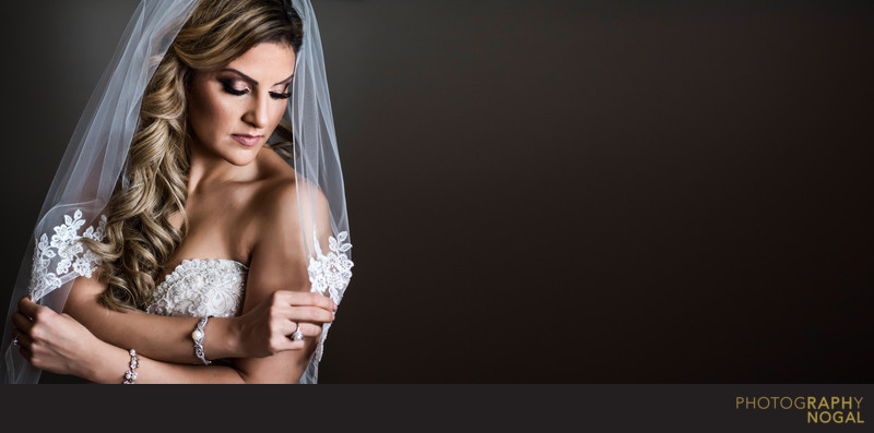 Beautiful Classic Bride Portrait using Window Light