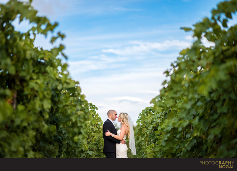 Couple in the Grape Vines at Hernder Estate Wines