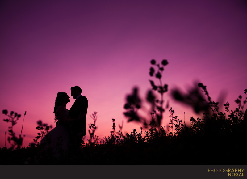 Bride and Groom Silhouette in Fields of West Lake
