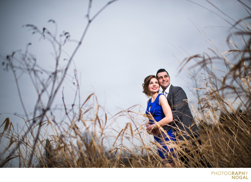 Humber Bay Bridge, couple gazes over wild grass