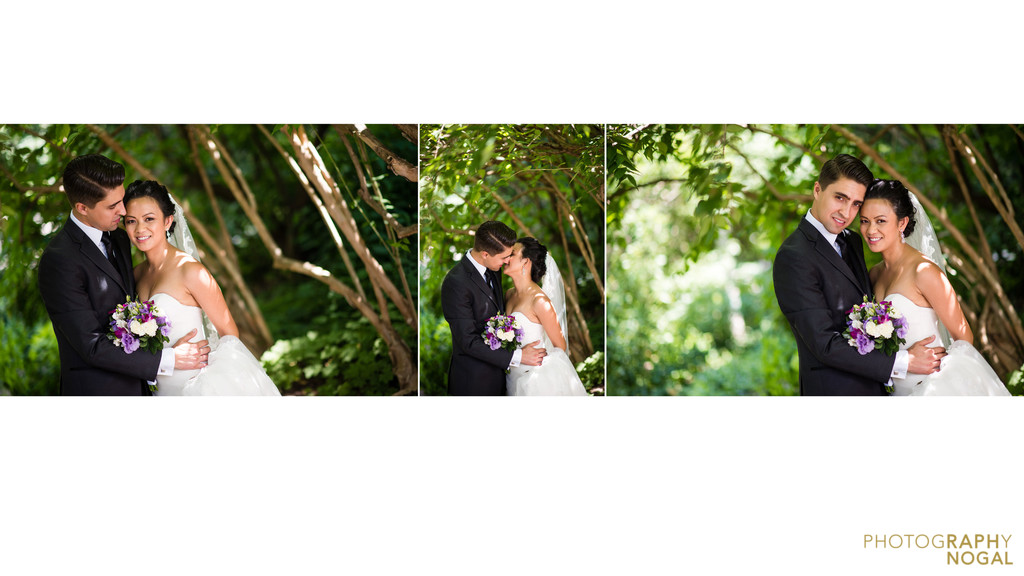 Wedding photos in Alexander Muir Memorial Gardens