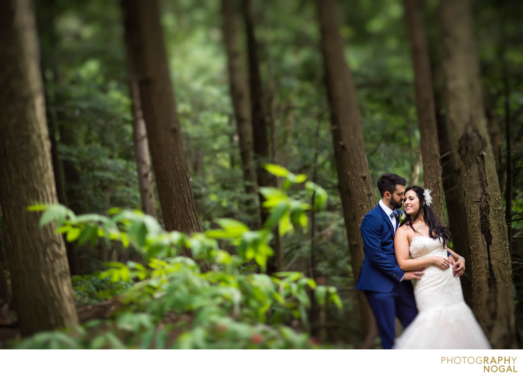Wedding Couple at McMichael Canadian Art Collection