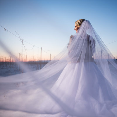 Bride In The Show With Long Veil