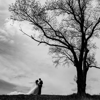 Bride and Groom under copper creek tree, dramatic sky