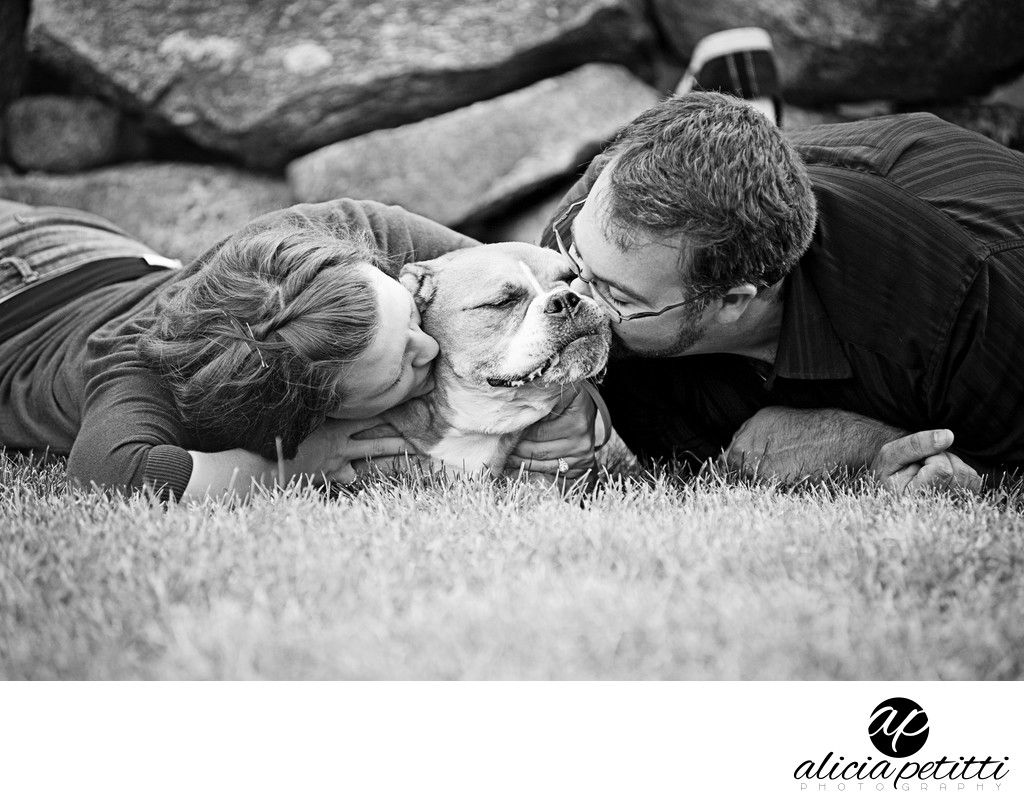 Pet Portrait Photographer Bourne Farm