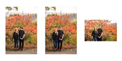 Sheffield Botanical Engagement Photographer