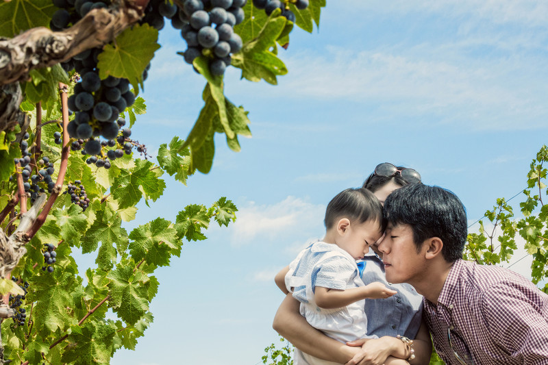 family in the vineyards