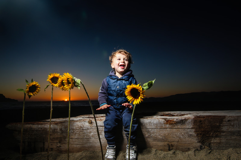 boy sunflowers sunset