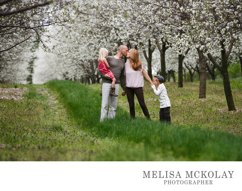 Kisses in the Cherry Blossoms | Family Photography | TC