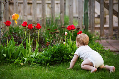 He Loves Tulips | Baby Photojournalism | Northern Mi