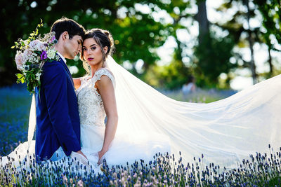 Lavender Field Wedding Photos in Langley