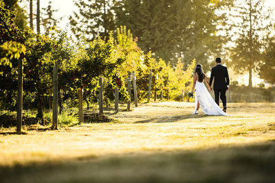 Weddings at Mount Lehman Winery in Abbotsford