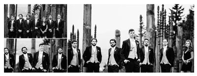Formal Portrait of Groomsmen at Burnaby Mountain