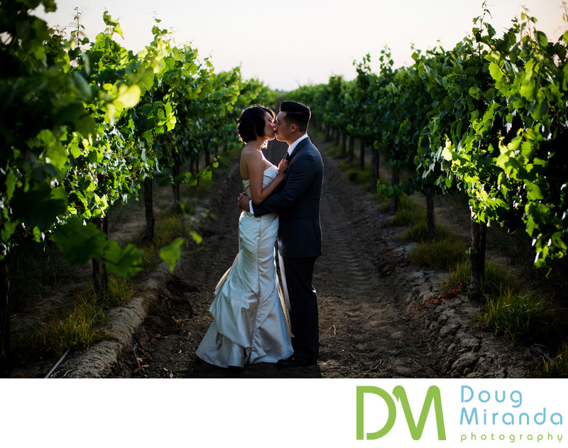 Best Sacramento Vineyard Wedding Photographer