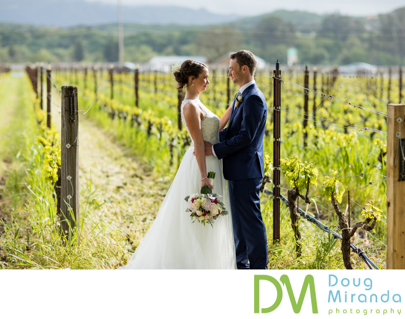 Landmark Vineyards Wedding Photography