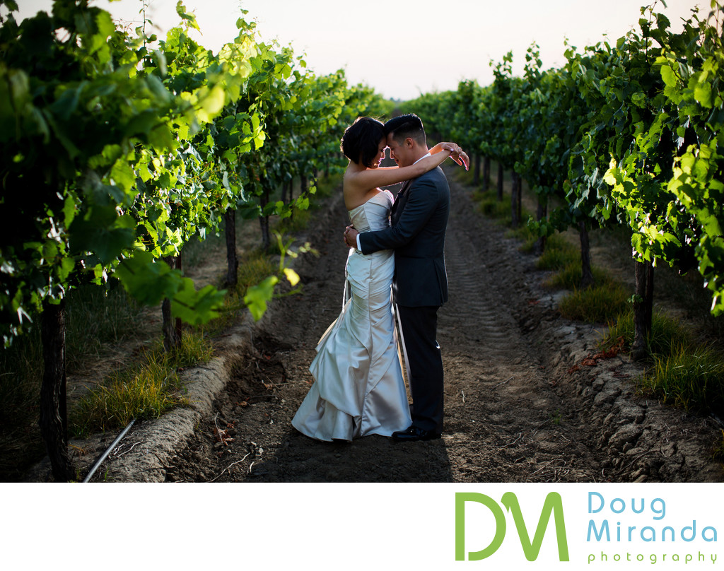 Sacramento Vineyard Wedding Photographer