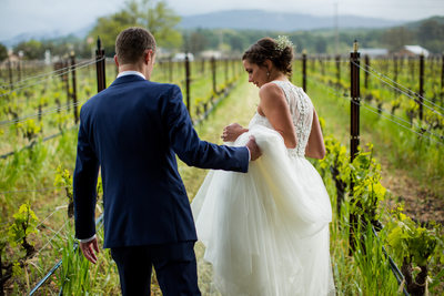 Landmark Vineyards Wedding Photos