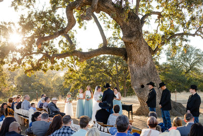 Yolo Land and Cattle Company wedding ceremony photos