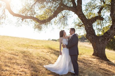 Black Oak Mountain Vineyard Photographs