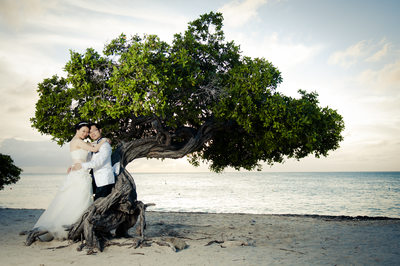 bride and groom divi tree