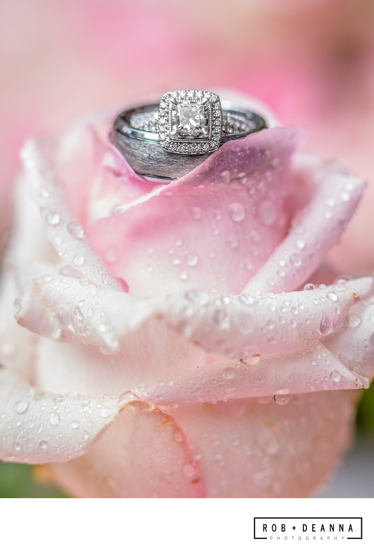 Memphis Wedding Photographers Rings