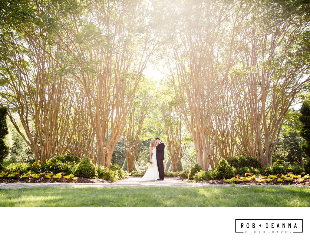 Memphis Wedding Photographer Portrait Trees