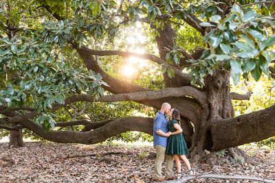 Memphis Wedding Photography Engagement Tree