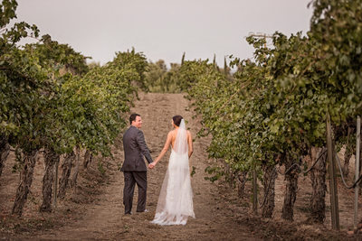 couple holding hands in a vineyard