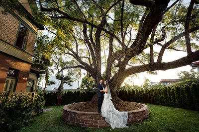 britt scripps manor wedding couple under tree