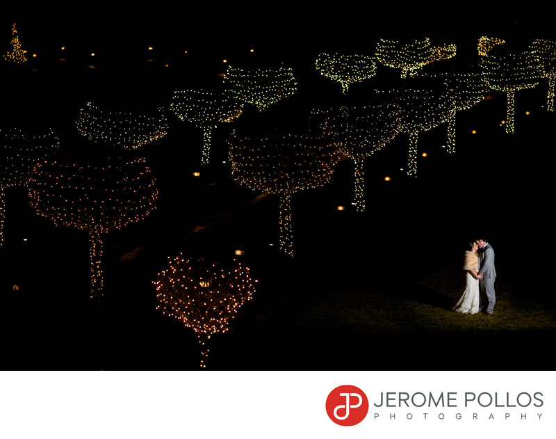 Coeur d'Alene Wedding Portrait Tree Lights Resort