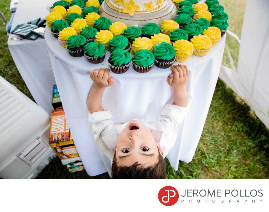 Wedding Cupcake Thief Caught Chaumont New York