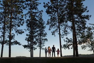 Tree Silhouette Lifestyle Family Portrait