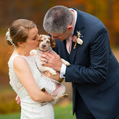 Pet wedding photography at the  Inn at Fogg Farm