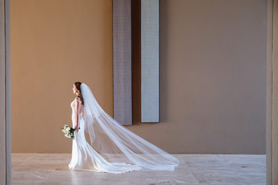 Baja California Wedding Photographer