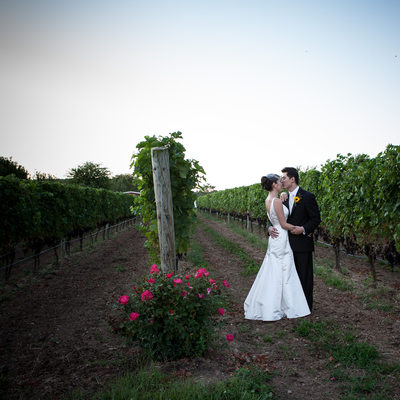 Baiting Hollow Long Island vineyard wedding photography