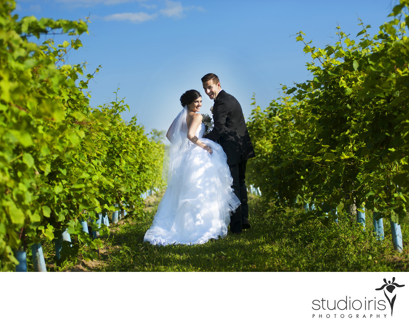 vineyard wedding montreal