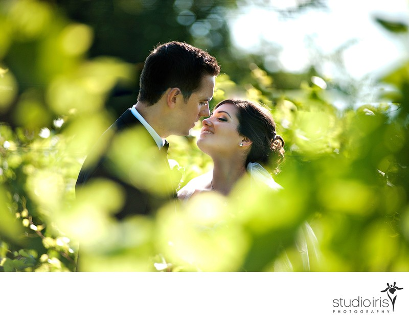 Montreal Wedding Photographer Chateau Taillefer Lafon
