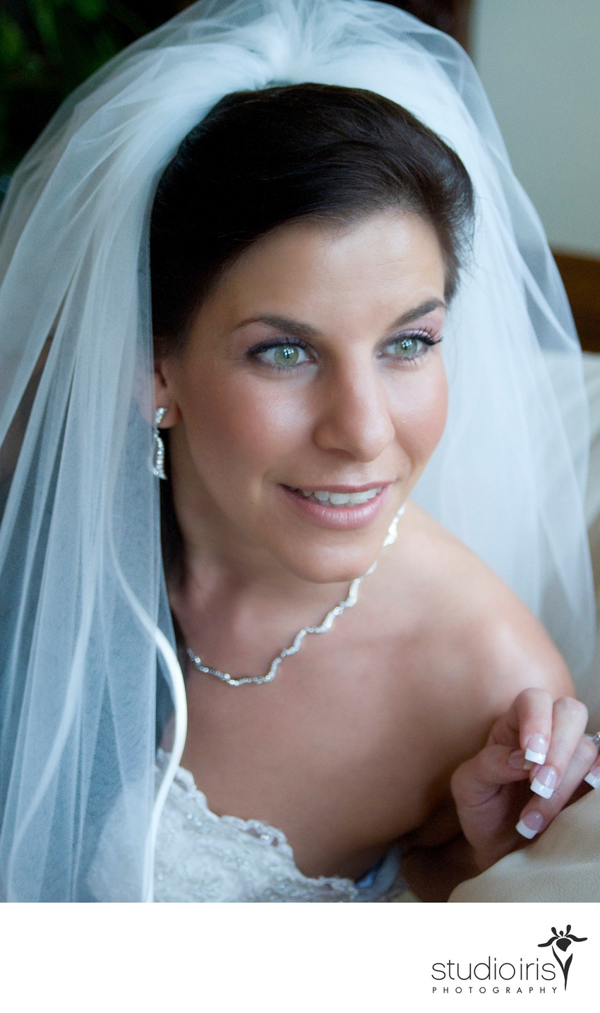 Bridal portrait by window