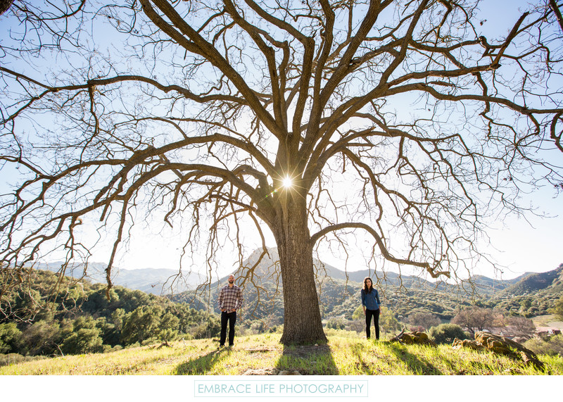 Engagement Portrait Under a Santa Monica Mountains Oak