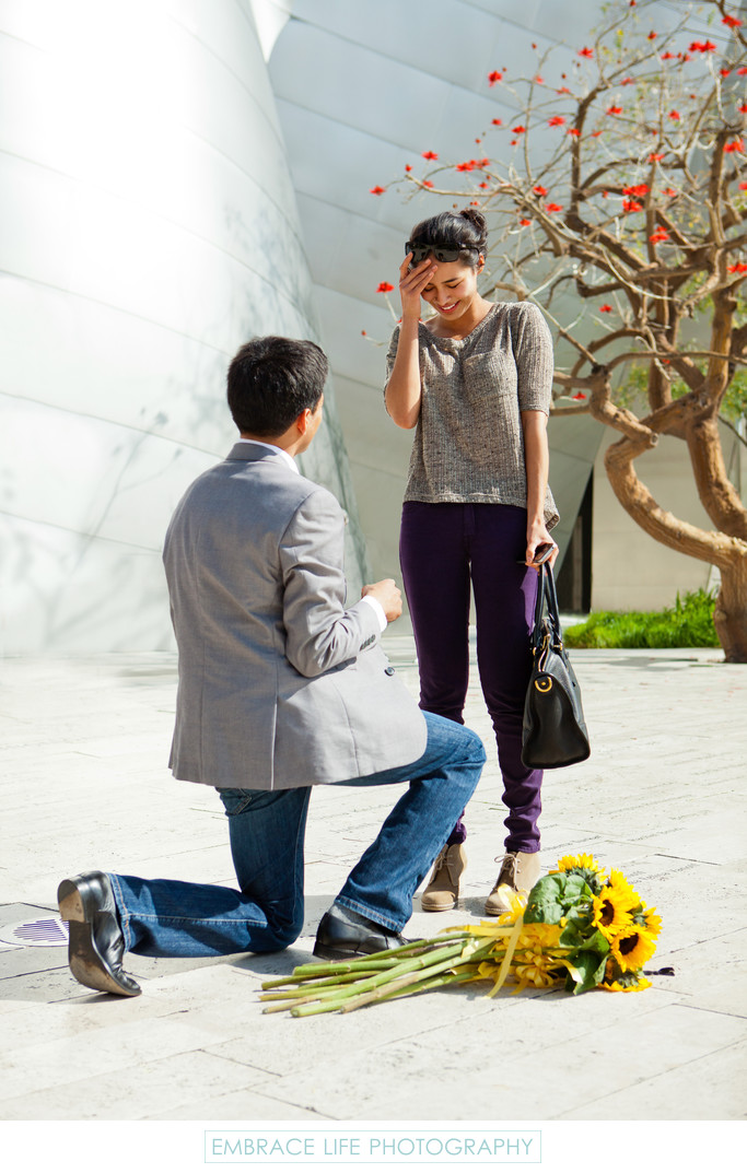 Marriage Proposal Photographed at Disney Concert Hall
