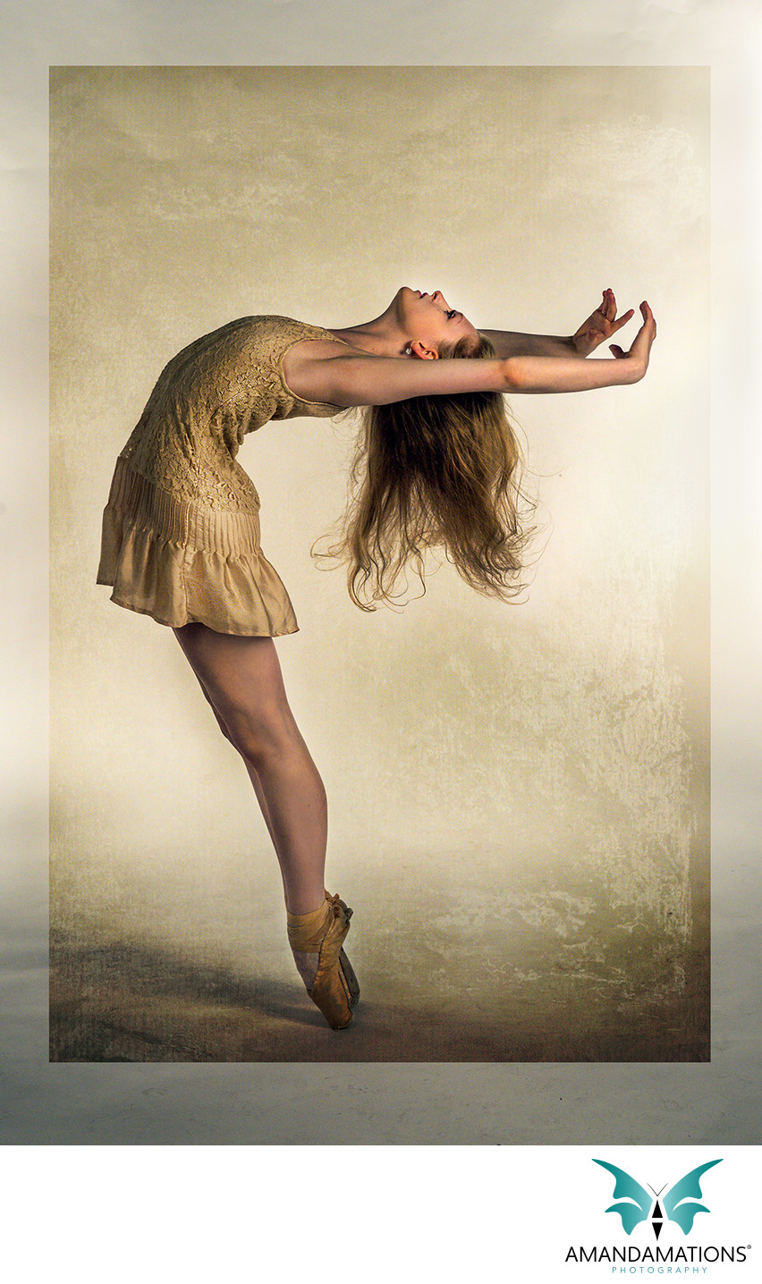 Ballet Dancer fine art