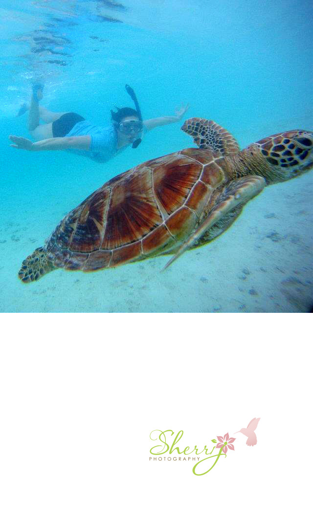 Sherri snorkeling in Bora Bora with a turtle