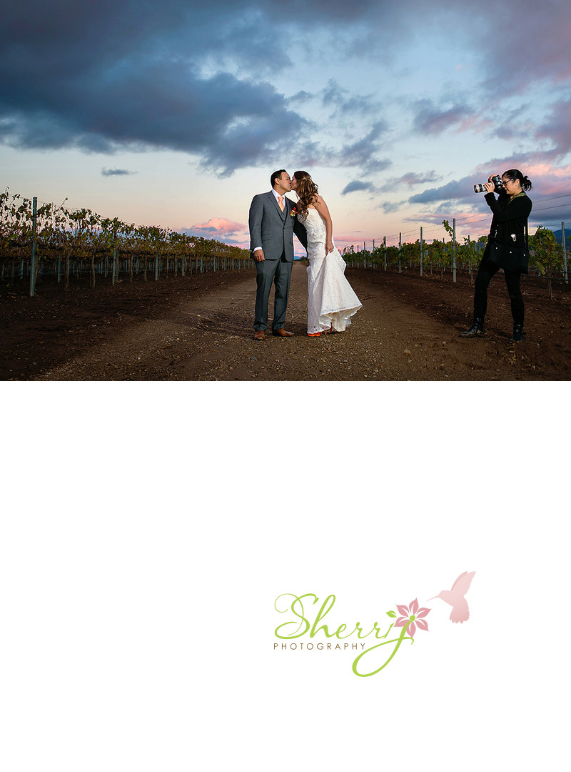California Vineyard Wedding Photographer
