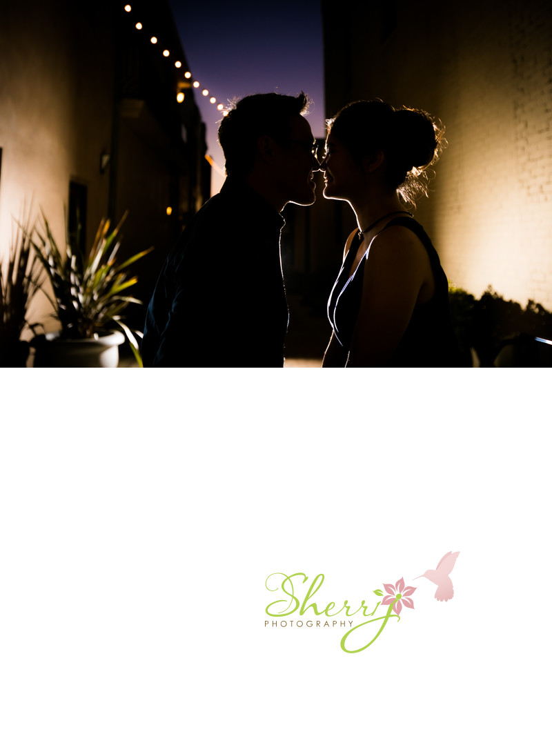 Twilight Engagement Silhouette