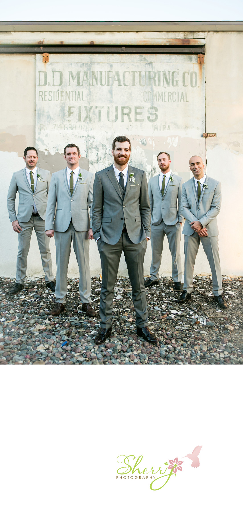 Groom and Groomsmen formal portrait Grey suits