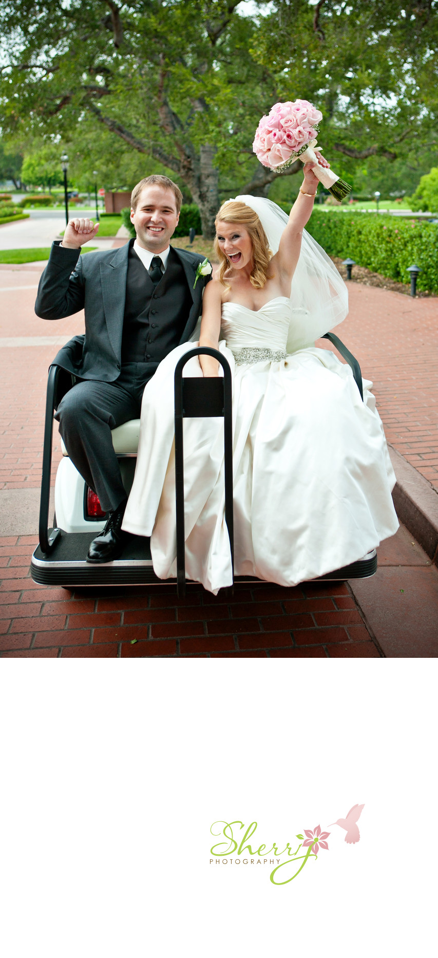 Groom Bride Golf Cart