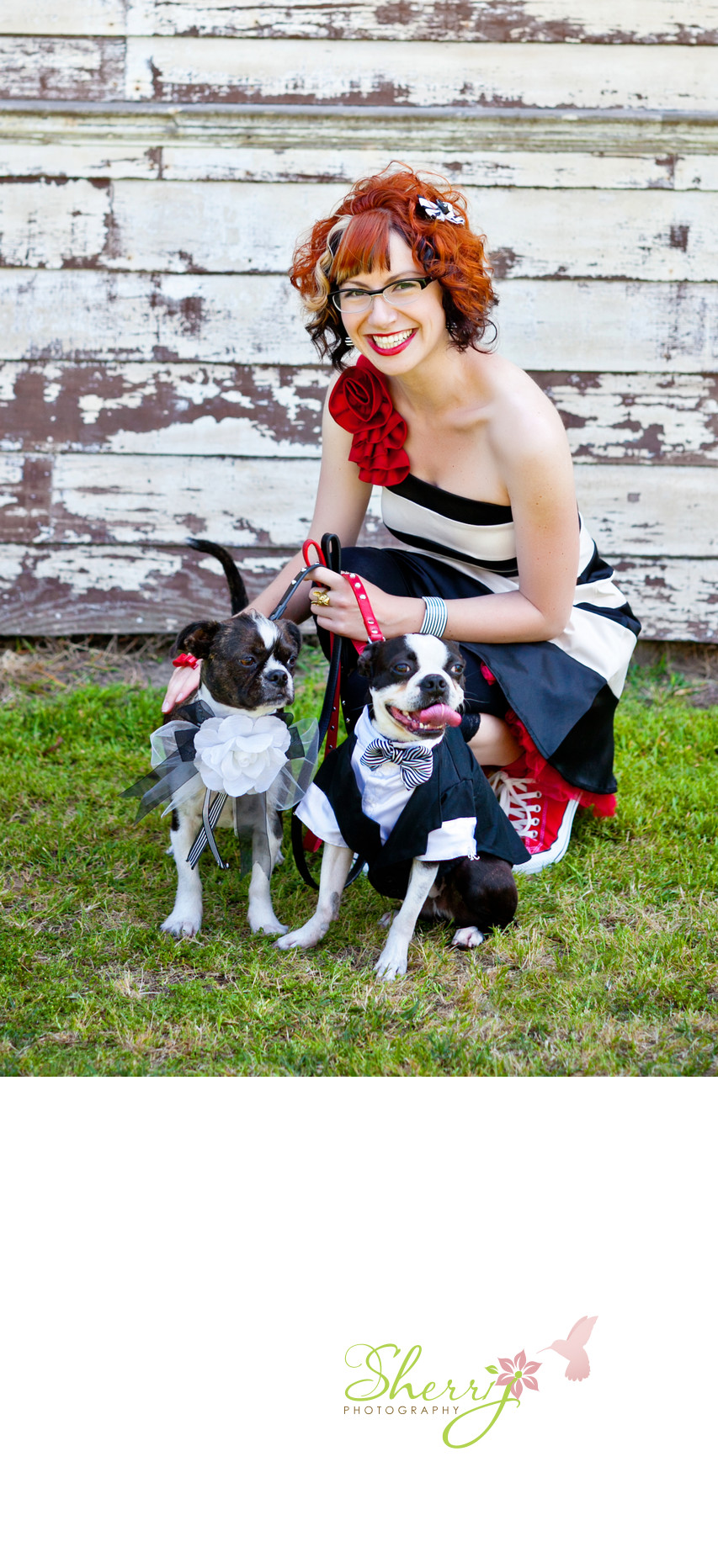 bridesmaid with cute dogs
