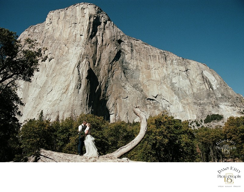 Yosemite elopement bride and groom El Capitan